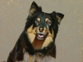 An oil painting of Grace the Australian Shepherd