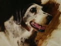 Oil painting of Molly which was done posthumously from the customer's own photographs.