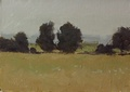 Oil sketch of trees and the front fields at Meadow Grove Farm in Bluemont, VA.