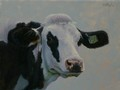 Painting by Simon Bland sold: Oil painting, portrait of 798, holstein cow.