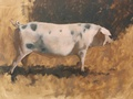 Oil painting of a Gloucestershire Old Spot pig at Ayrshire Farm in Upperville, VA.
