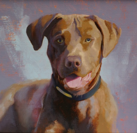 Commissioned oil portrait of a dog called Chester