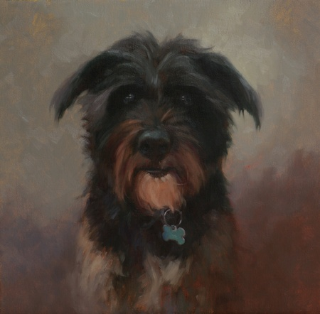 Portrait of dog Jackson.