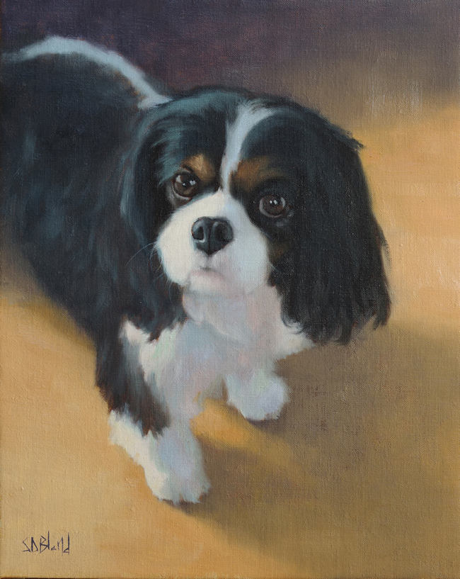 Oil portrait of a King Charles spaniel