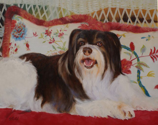Oil painting of tibetan terrier Redford