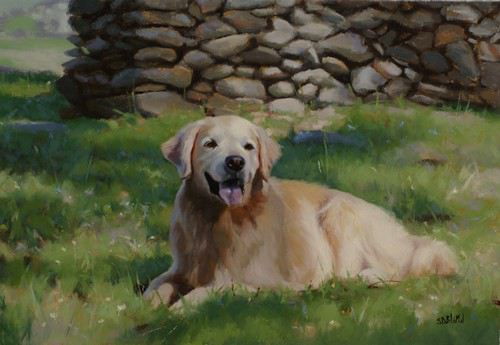 Oil painting and portrait of golden retriever Zeke