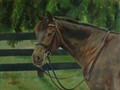 Oil painting of horse Elle