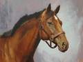 Commissioned oil painting of a horse named Joan of Arc.
