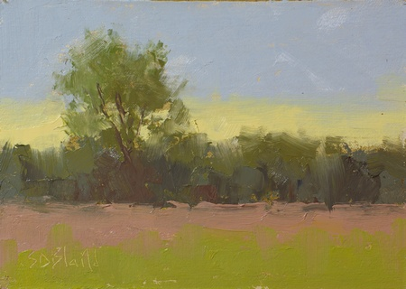 A plein air oil sketch done at Bronze Hill Farm in Middleburg, VA.