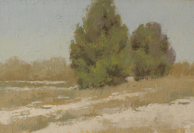 An oil painting of cedars in snow with pale grasses.