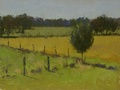 A plein air oil painting done on location of the fields on the south side of Ayrshire Farm in Upperville, VA.