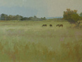 This wide-format landscape features horses grazing in an open field.