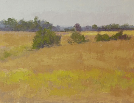 A plein air oil painting done at Trough Hill Farm in Middleburg, VA.