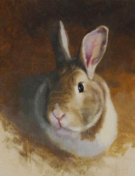 A sketch portrait of rabbit HB done in oil on linen panel