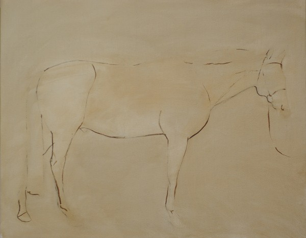 Initial layout for the conformation portrait of a horse