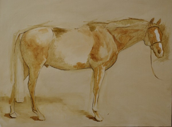 Block-in for a conformation portrait of a horse