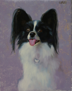 A portrait of a papilion dog with lilac background