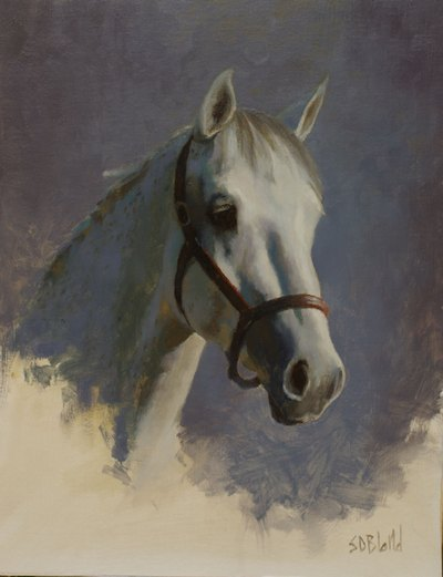 A sketch portrait of a gray horse