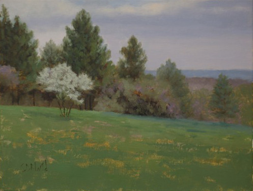 Plein air painting featuring a Russian olive tree, pines and an open grassy field.