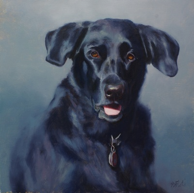 A portrait of a black lab with blue-gray background