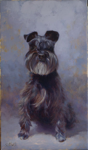 A portrait of a black schnauzer dog with purple-gray abstract background