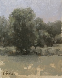 Study of a tree with grayed out palette