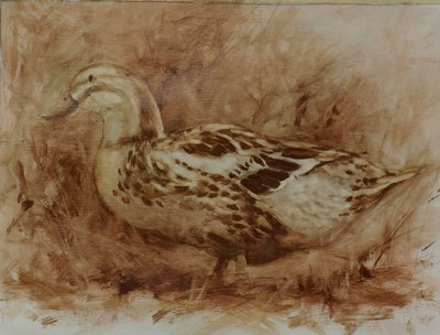 This monochrome oil sketch of a duck is done in transparent paint.