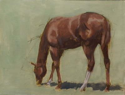 A gestural sketch of a young horse (filly) grazing.