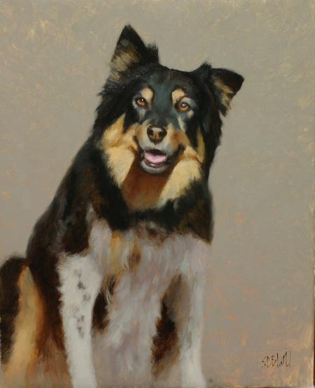 A portrait of a shepherd dog - WIP