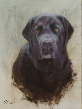 An oil portrait of a black lab done in a vignette style. The background is partially unfinished.