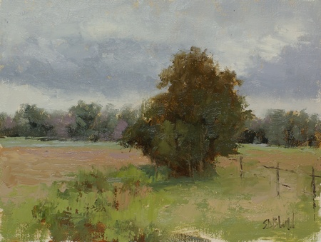 Plein air painting of a single tree in the middle of a field. The painting also features a distant treeline and cloudy sky.