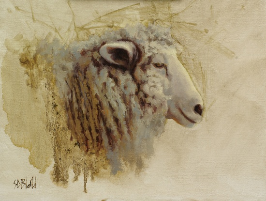 A portrait of a sheep seen from the side