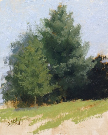 A plein air painting of pine trees on a hillside at Silverbrook Farm. The foreground grass is painted very loosely.