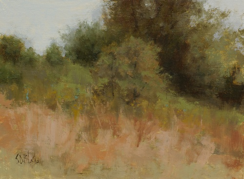 A painting of bushes in a treeline. This uses transparent darks and an impressionistic foreground with texture effects.