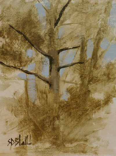 Plein air sketch of a pine tree