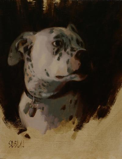 Sketch portrait of Apollo