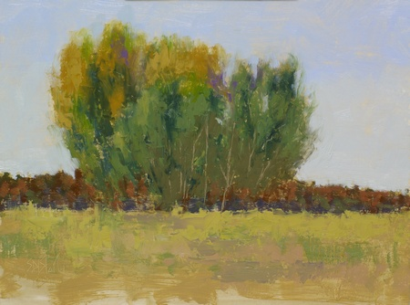 Plein air painting of cottonwood trees at Great Country Farms