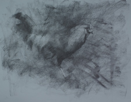 A charcoal study for the portrait of a rooster
