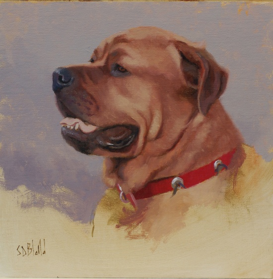 A portrait of a mastiff