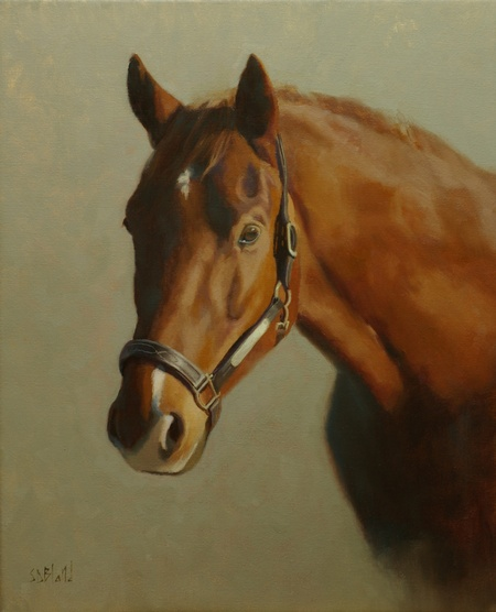 A portrait of a chestnut horse