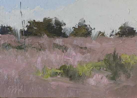 Study of fields in late summer