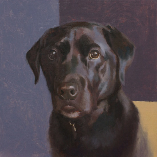 Portrait of a black lab by Simon Bland