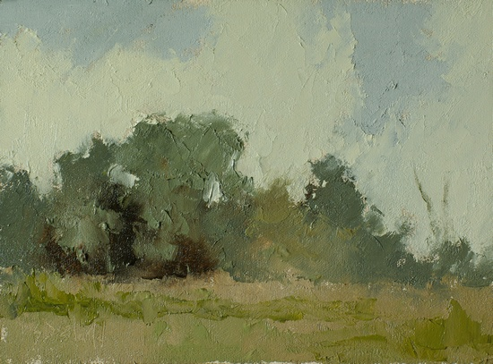 Study of trees at One Trick Farm
