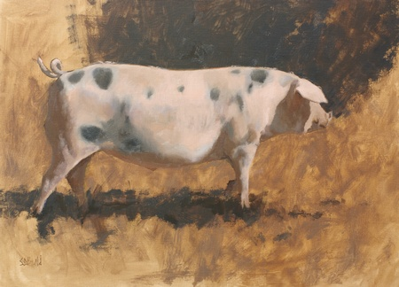 Painting of a Gloucestershire Old Spot pig