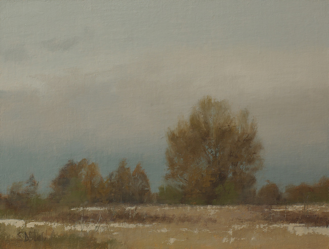 Oil painting of trees in Discovery Park by artist Simon Bland