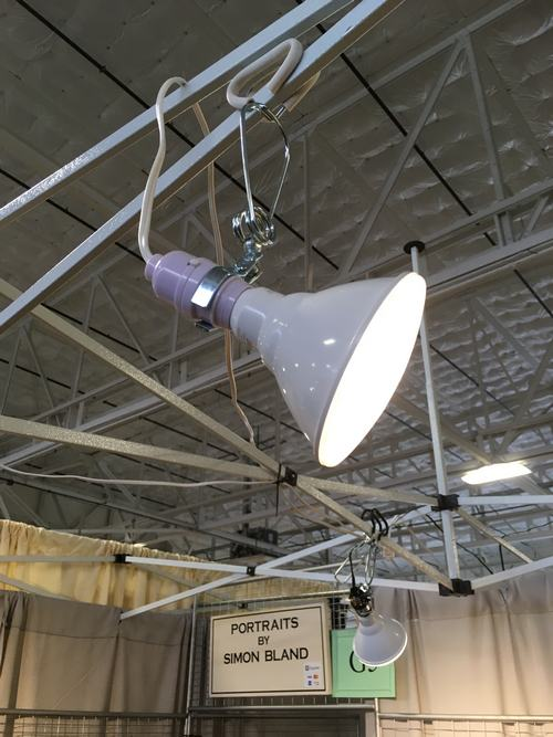Artists clamp lamp with PAR 39 LED bulb