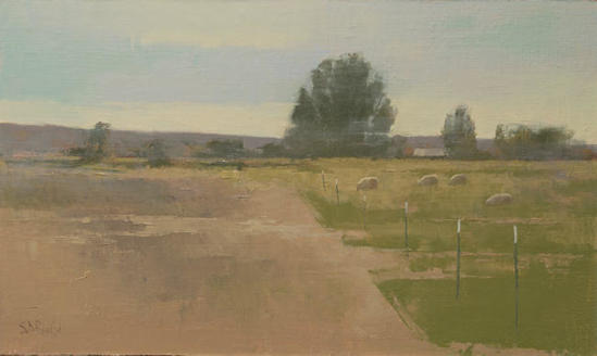 A pastoral landscape with tilled field and green pasture
